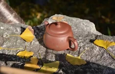 【喝茶】是不是喝茶都要喝最出名最好的?
