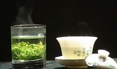 茶叶的审评术语小结,茶人必备知识