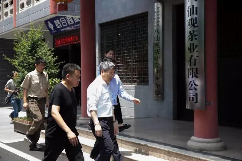 湖北省委副书记、武汉市委书记陈一新调研武当山八仙观茶业