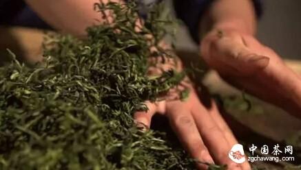 【一片茶叶的故事】漫漫旅程  百炼成茶