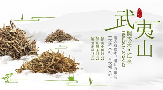 """上海茶业交易中心带你解读 世界""""红茶鼻祖""""——武夷红茶"""