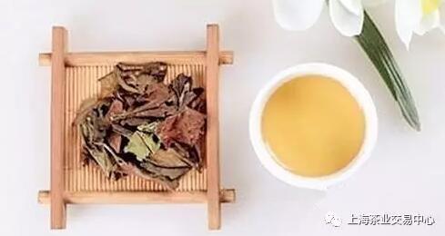 上海茶业交易中心福鼎寿眉盛大发售,老白茶带你重温岁月变迁
