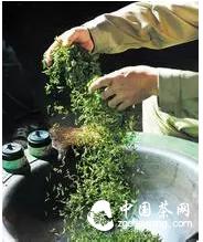 """茶人必知六宗""""最""""!"""