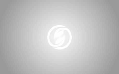 雅致· 至简· 干泡法